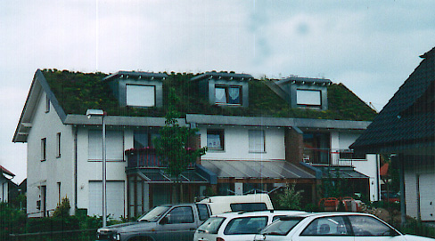 a green roof in Germany
