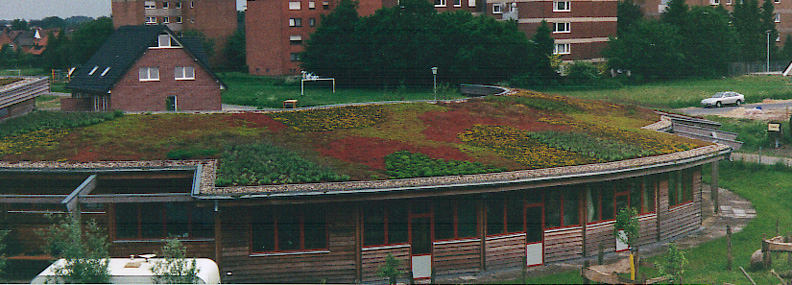 Another German Green Roof